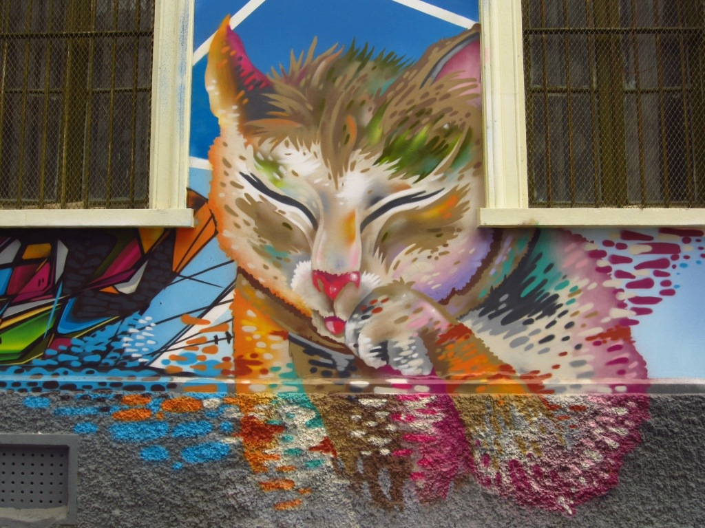 The imaginations of Valparaiso